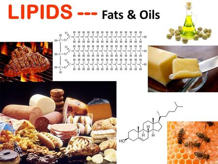 LIPIDS --- Fats & Oils. LIPIDS include: fats oils cholesterol phospholipids.
