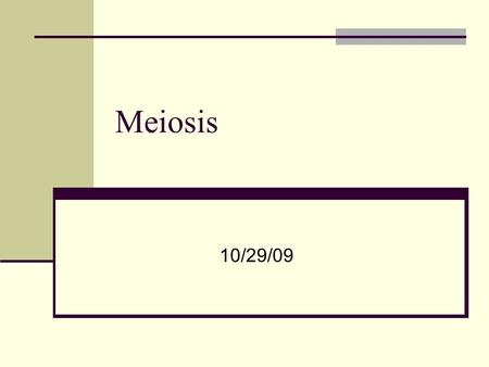 Meiosis 10/29/09. What can you tell me about Mitosis?
