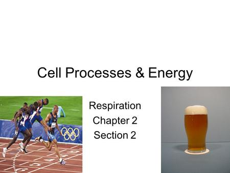 Cell Processes & Energy Respiration Chapter 2 Section 2.