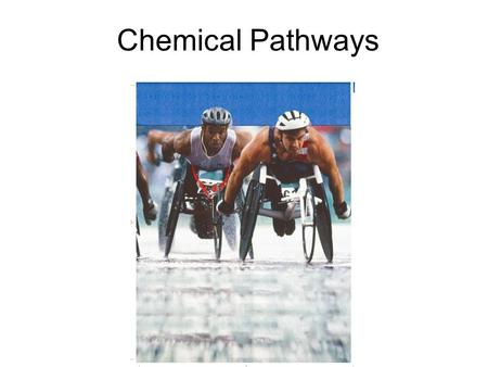 Chemical Pathways. Cellular Respiration Cellular respiration is the process that releases ___________ by breaking down glucose and other food molecules.