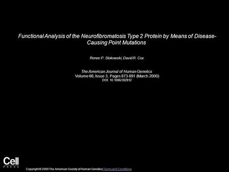 Functional Analysis of the Neurofibromatosis Type 2 Protein by Means of Disease- Causing Point Mutations Renee P. Stokowski, David R. Cox The American.