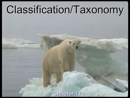 Classification/Taxonomy Chapter 17. Why Classify? Why Classify? To study the diversity of life, biologists use a classification system to name organisms.