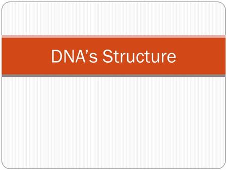 DNA's Structure. The Shape of DNA DNA has a shape called a Double Helix When flattened out it would look like a ladder.