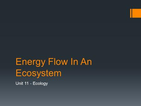 Energy Flow In An Ecosystem Unit 11 - Ecology. Producers  The most important part of an ecosystem  Without a constant energy source, living things cannot.