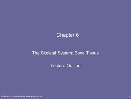 Principles of Human <strong>Anatomy</strong> <strong>and</strong> <strong>Physiology</strong>, 11e1 <strong>Chapter</strong> 6 The Skeletal System: Bone Tissue Lecture Outline.