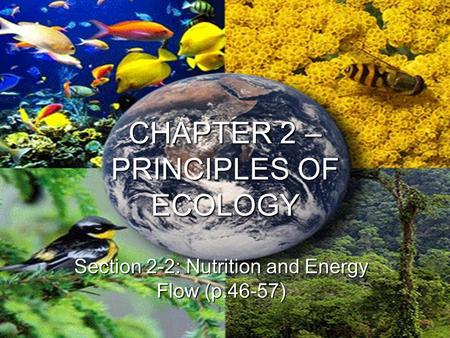 CHAPTER 2 – PRINCIPLES OF ECOLOGY Section 2-2: Nutrition and Energy Flow (p.46-57)