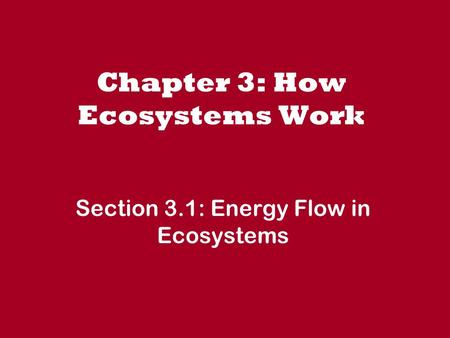 Chapter 3: How Ecosystems Work Section 3.1: Energy Flow in Ecosystems.