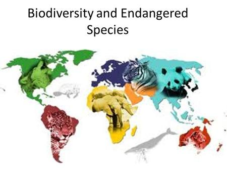 Biodiversity and <strong>Endangered</strong> <strong>Species</strong>. Chapter Overview Questions How do scientists account for the development of life on earth? What is biological evolution.