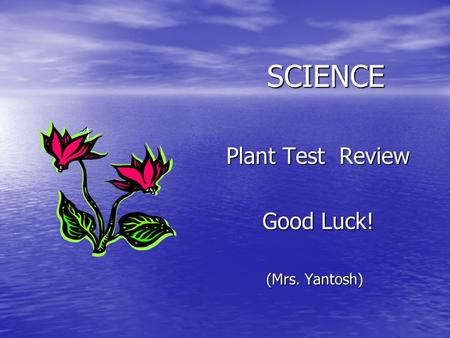 SCIENCE <strong>Plant</strong> Test Review <strong>Plant</strong> Test Review Good Luck! Good Luck! (Mrs. Yantosh)