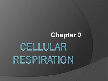 Chapter 9. Cellular Respiration  The process that releases energy (ATP) by breaking down food molecules in the presence of oxygen.