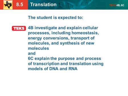 8.5 Translation TEKS 4B, 6C The student is expected to: 4B investigate and explain cellular processes, including homeostasis, energy conversions, transport.