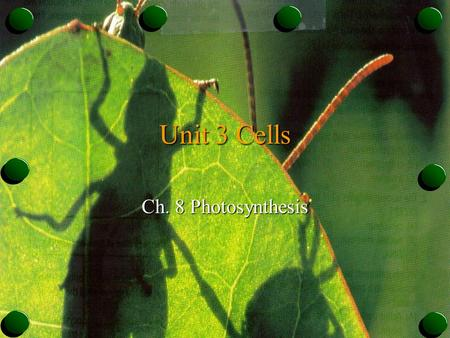 Unit 3 Cells Ch. 8 Photosynthesis. Autotrophs & Heterotrophs o Plants & some other types of organisms are able to use light energy from the sun to produce.