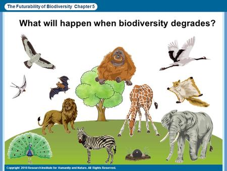 Copyright 2010 Research Institute for <strong>Humanity</strong> <strong>and</strong> <strong>Nature</strong>. All Rights Reserved.  What will happen when biodiversity degrades? The Futurability of Biodiversity.
