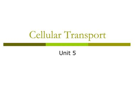 Cellular Transport Unit 5. Passive Transport  Does not use energy 1. Diffusion Movement of particles from an area of higher concentration to an area.