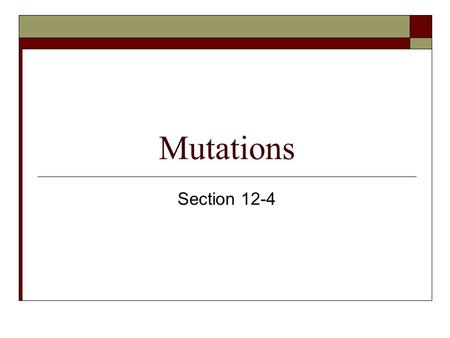 Mutations Section 12-4. Objectives for this section  Contrast gene mutations and chromosomal mutations.