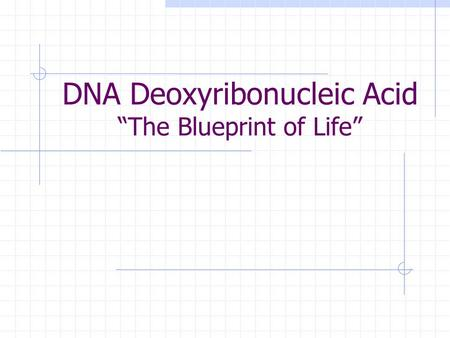 Dna deoxyribonucleic acid the blueprint of life ppt download dna deoxyribonucleic acid the blueprint of life malvernweather Choice Image