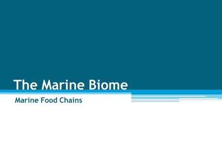 The Marine Biome Marine Food Chains. Biodiversity The variety of living things in a particular area.
