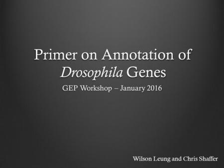 Primer on Annotation of <strong>Drosophila</strong> Genes GEP Workshop – January 2016 Wilson Leung and Chris Shaffer.