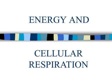 ENERGY AND CELLULAR RESPIRATION. Energy n Chemical energy – found in the bonds of food n Activation energy – energy needed to get a reaction started n.