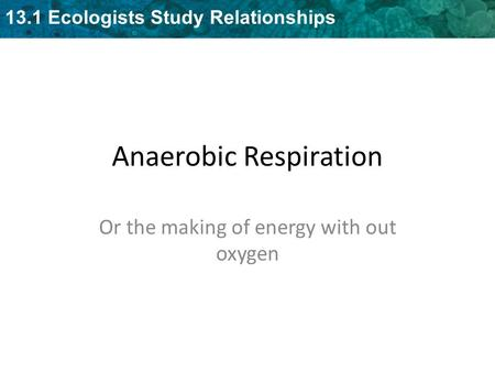 Anaerobic Respiration - Fermentation13.1 Ecologists Study Relationships Anaerobic Respiration Or the making of energy with out oxygen.