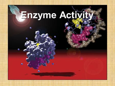 Enzyme Activity. ______________________ are broken and made between one or more substances to create new substances. In the process energy is absorbed.
