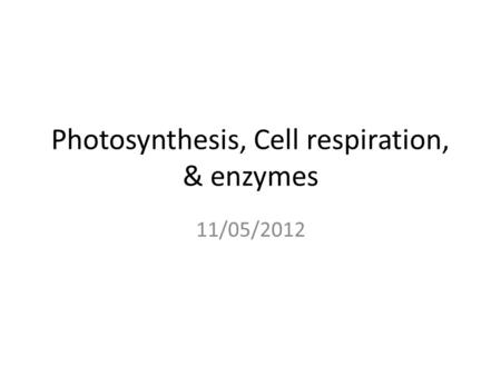 Photosynthesis, Cell respiration, & enzymes 11/05/2012.
