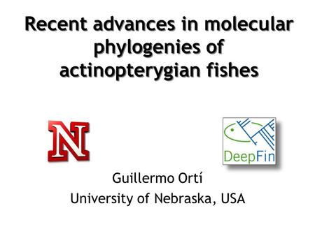 Recent advances in molecular phylogenies of actinopterygian fishes Guillermo Ortí University of Nebraska, USA.