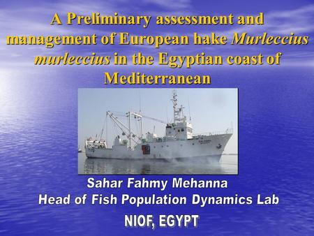 A Preliminary assessment and management of European hake Murleccius murleccius in the Egyptian coast of Mediterranean.