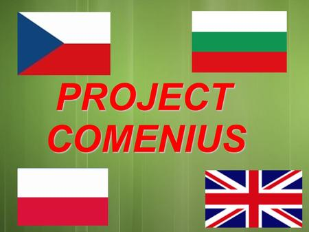 PROJECT PROJECTCOMENIUS. Basic Info about our project Basic Info about our project Our project started in the year 2011 and it finishes at the end of.