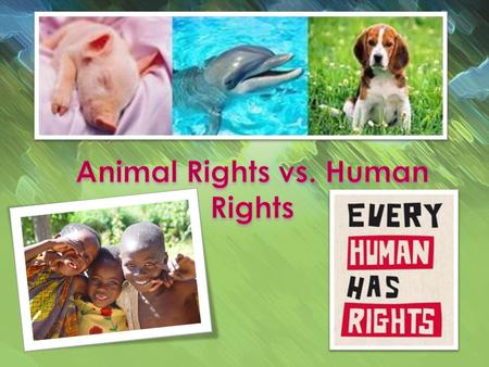 What are rights? Human life versus <strong>animal</strong> life. What are Human Rights? What are the most known human rights?