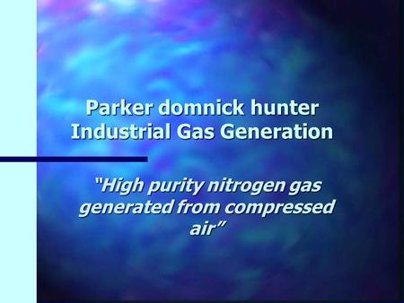 Parker domnick hunter Industrial Gas Generation