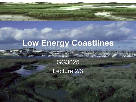 Low Energy Coastlines GG3025 Lecture 2/3.