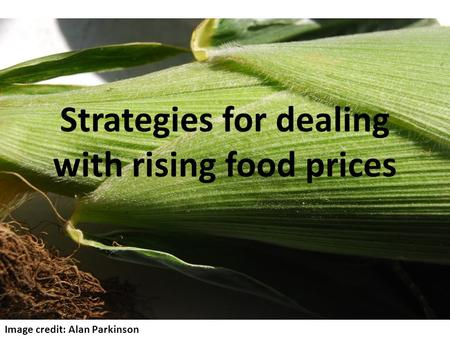 Strategies for dealing with rising food prices Image credit: Alan Parkinson.