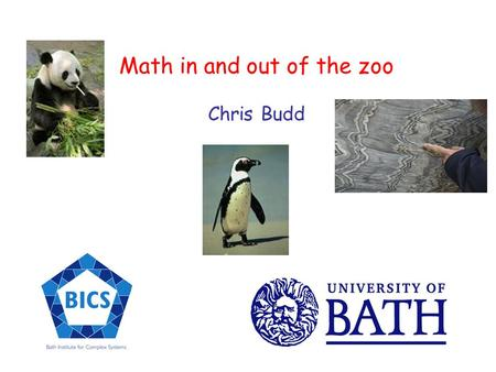 Math in and out of the zoo Chris Budd Where does a mathematician go to find some maths when they are not in their office? At play?