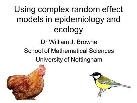 Using complex random effect models in epidemiology and ecology