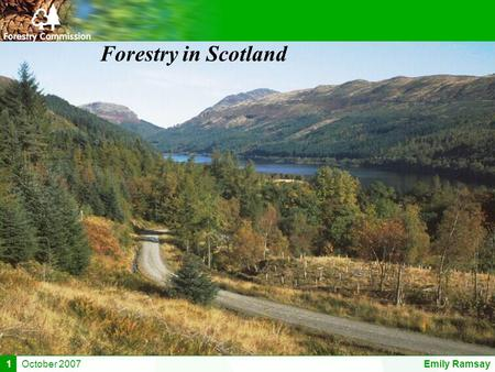 October 2007Emily Ramsay1 Forestry in Scotland. October 2007Emily Ramsay1 Why is forestry important in Scotland? Total Woodland – 1341 thousand hectares.