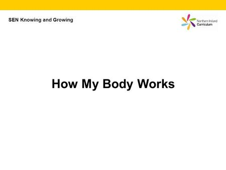 How My Body Works SEN Knowing and Growing. How my body works Everyone knows a car needs petrol to go. It also needs water and oil, and air in the tyres.