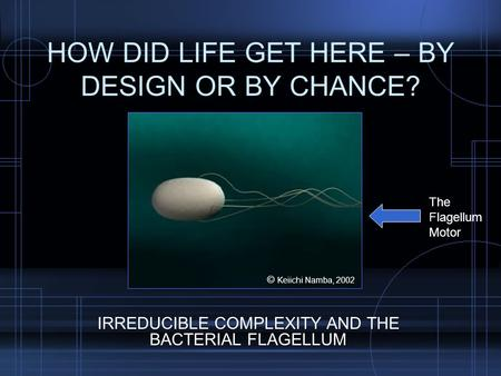 HOW DID LIFE GET HERE – BY DESIGN OR BY CHANCE? IRREDUCIBLE COMPLEXITY AND THE BACTERIAL FLAGELLUM The Flagellum Motor © Keiichi Namba, 2002.