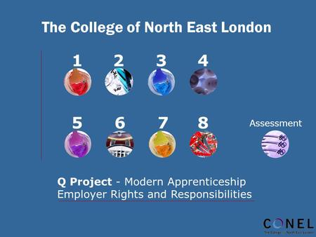 The College of North East London 1234 5678 Q Project - Modern Apprenticeship Employer Rights and Responsibilities Assessment.