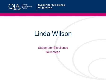 Linda Wilson Support for Excellence Next steps. Next Steps Support for 129 established groups Recruitment of up to 36 new groups Target under-represented.