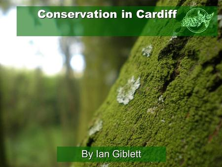 Conservation in Cardiff Conservation in Cardiff By Ian Giblett.