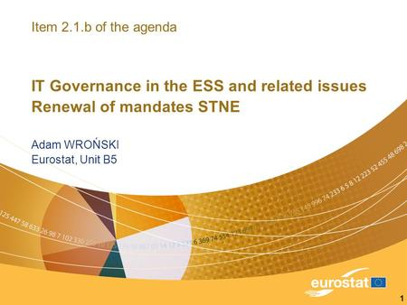 1 Item 2.1.b of the agenda IT Governance in the ESS and related issues Renewal of mandates STNE Adam WROŃSKI Eurostat, Unit B5.
