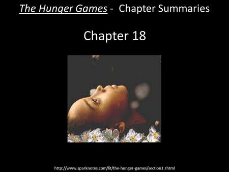 hunger games chapter 23 summary
