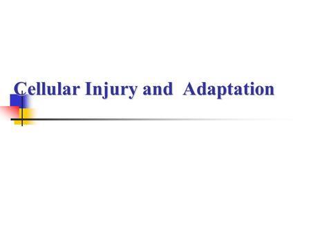 CELLULAR ADAPTATION Dr  Mohamed seyam  - ppt download