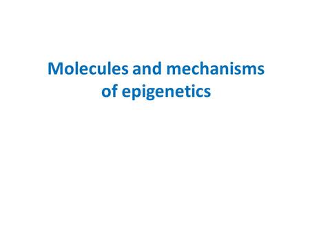 Molecules <strong>and</strong> mechanisms of epigenetics. Adult stem cells know their fate! For example: myoblasts can form muscle cells only. Hematopoetic cells only.