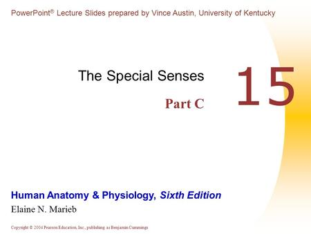 CHAPTER # 15(c) THE SPECIAL SENSES. - ppt download