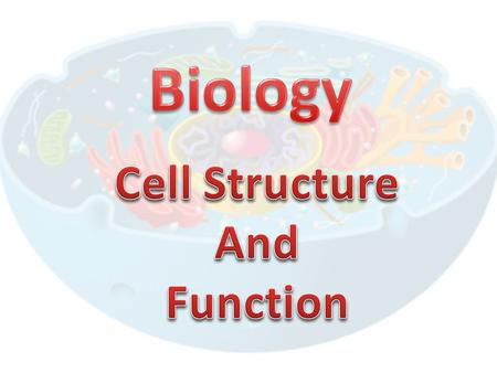 7-3 Cell Boundaries A cells survival depends on its ability to maintain homeostasis and get nutrients Homeostasis – dissolved substances are equal inside.