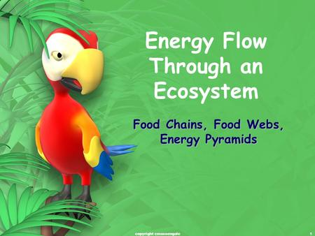 1 Energy Flow Through an Ecosystem Food Chains, Food Webs, Energy Pyramids copyright cmassengale.