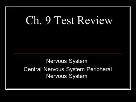 Functions of the Nervous System - ppt download