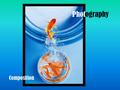 Photography Composition. What is Composition? The arrangement of visual elements within the frame of a photograph.